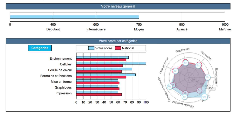 PCIE Passeport compétence informatique européen - rapport recommandations test certification - Djem Formation Cergy Pontoise