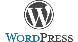 Wordpress Formation Webmarketing Edition site Web