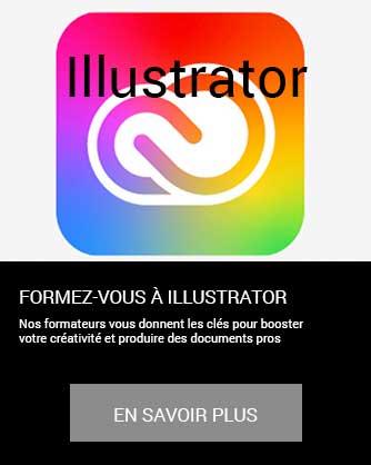 formation infographie edition image Illustrator vectoriel en savoir plus à distance inter intra certifiant CPF Cergy Djem