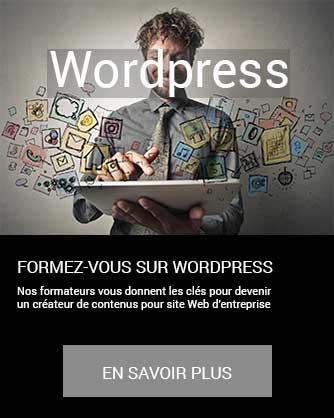 formation WordPress édition création site web internet marketing communication en savoir plus à distance inter intra certifiant CPF Cergy Djem
